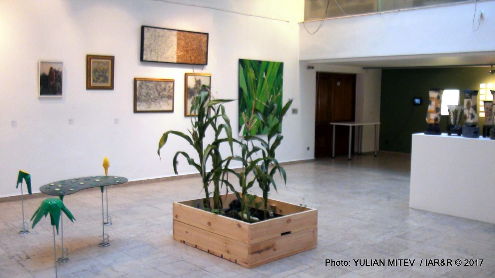 Общ вид (интериор) от изложбата. Експонатът в средата е дело на кураторката В. Ножарова и илюстрира основната теза и заглавие NATURA VIVA