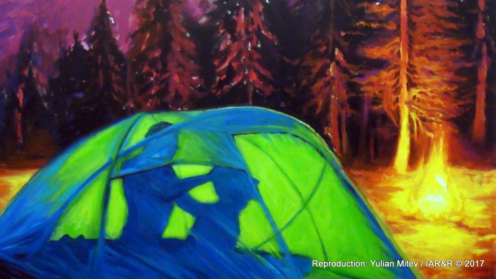 """Дина Стоев(а), """"Триместна палатка"""" (фрагмент), 2017, акрил върху платно, 130 х 150 см, естимейт - € 800 , провенанс – ателието на художничката"""