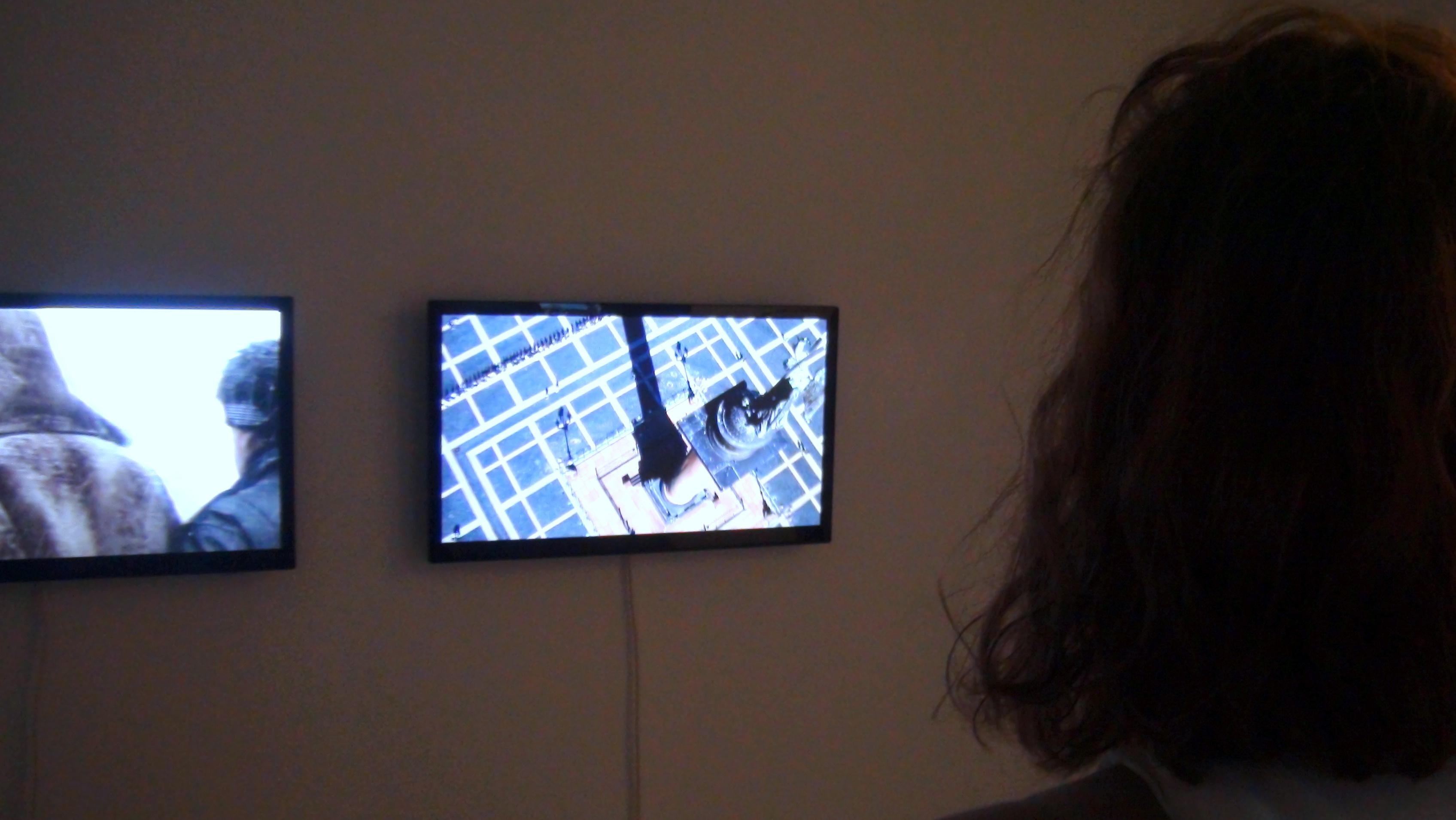 Девет видеоарта предстгавиха с голяма пълнота визуалния ред, който бе изградил екипът на изложбата